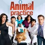 animal_practice