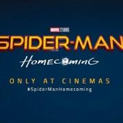 geekstra_spiderman-new-logo
